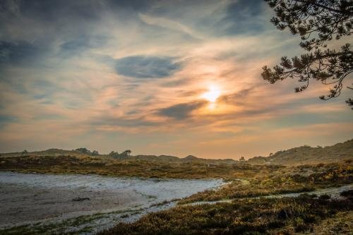 2018 - Excursie Struinen door de Duinen