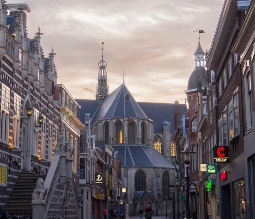 Tiem-Meijering-Alkmaar